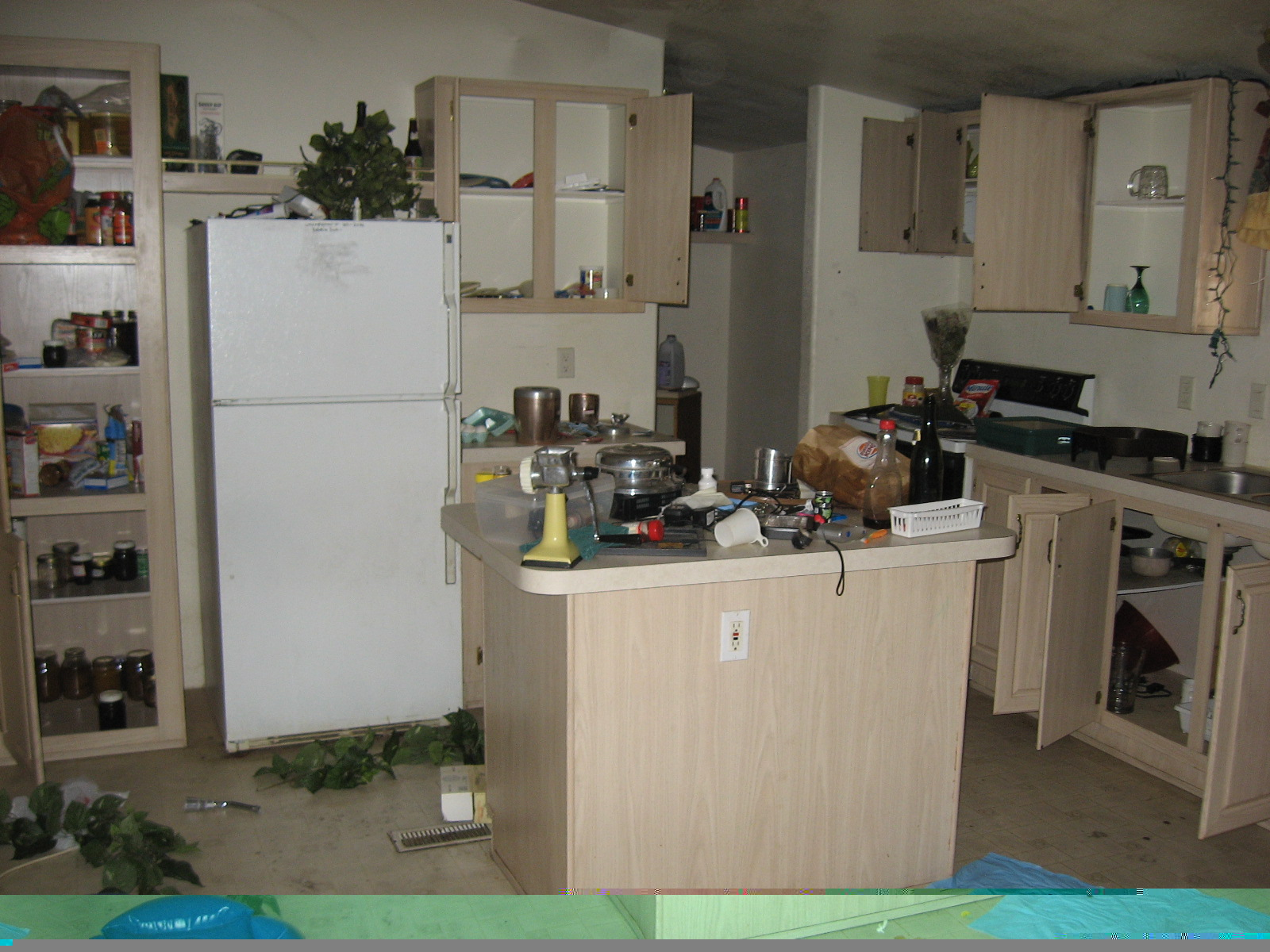 Common Foreclosure Cleanout Problems