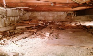 crawl space clean out