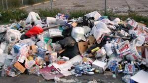 trash removal_1