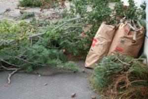 yard waste hauling