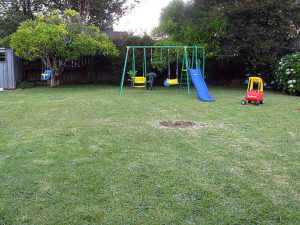 backyard swing set disposal