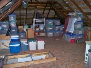 attic clean out hacks