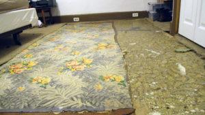 sheet flooring removal