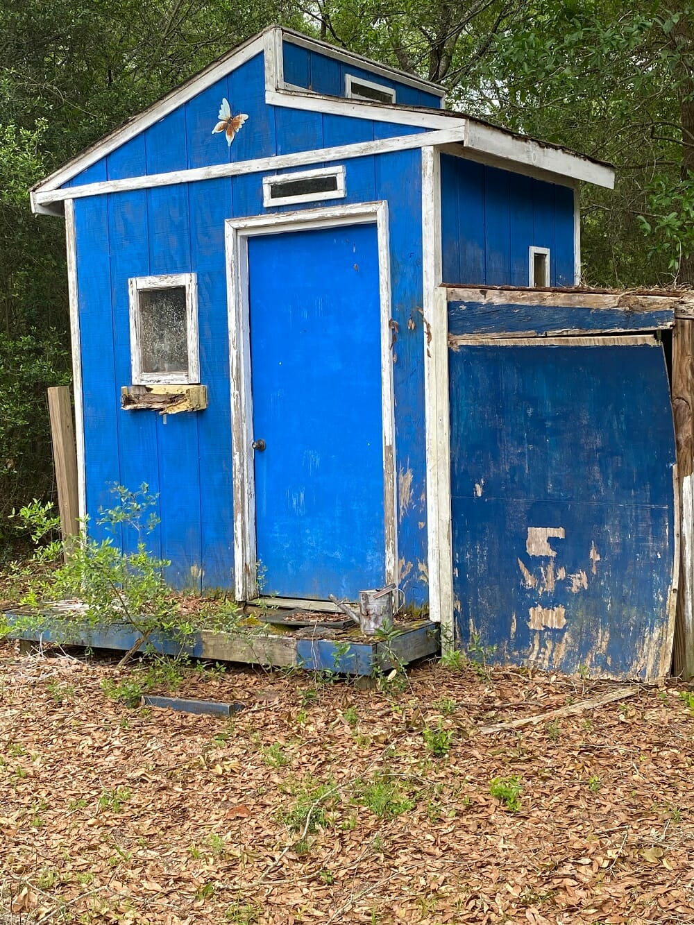 shed_removal