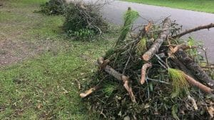 yard waste hauling in Bradenton