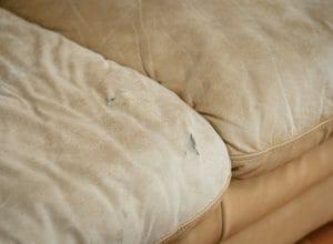 Worn Sofa Disposal in Sarasota