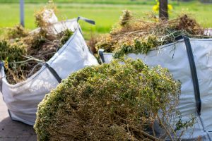 Lawn Waste Disposal in Oldsmar