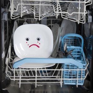 Dishwasher Failure Signs in Bradenton