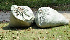 Landscaping Waste Disposal in Tampa
